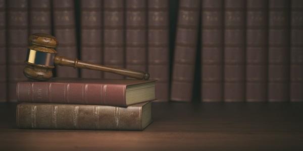 adwokat alimenty toruń